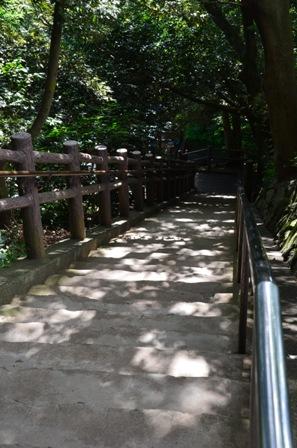 柿田川公園 第一展望台