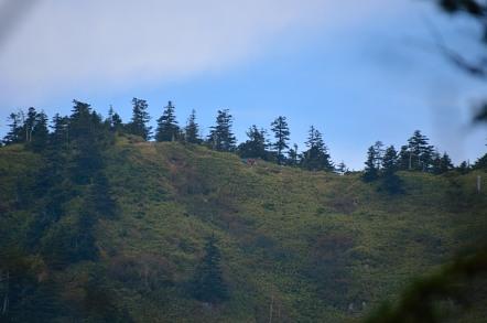 志賀高原 池めぐり 志賀山