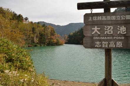 志賀高原 池めぐり 大沼池 池尻
