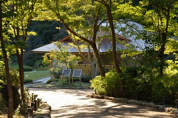 東山動植物園 也有園