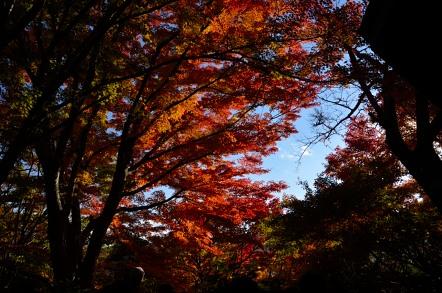 香嵐渓 飯盛山 山頂