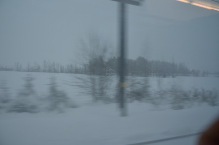 オスロ空港 オスロ中央駅 車窓