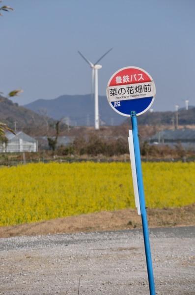 バス停 菜の花畑前