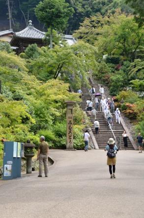 三室戸寺 本堂 階段