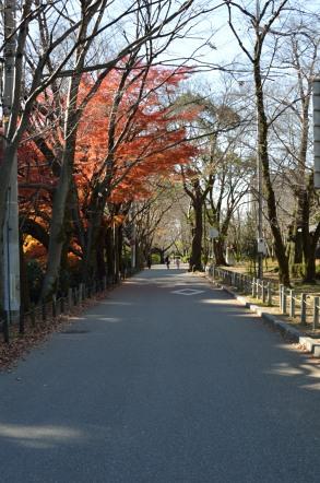 岐阜城 護国神社