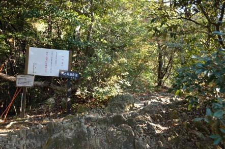 めい想の小道 馬の背登山道 分岐点