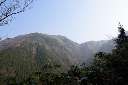 白草山 高森山