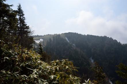 白草山 山頂