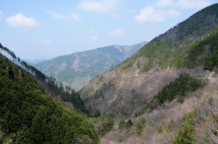 白草山 黒谷林道