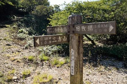 小倉山 登山道 笹原峠