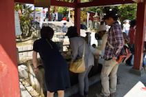 津島市 尾張津島 藤まつり 津島神社