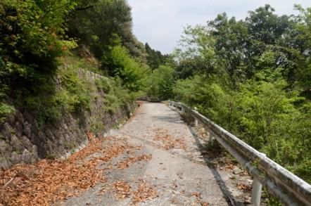 竜ヶ岳 表道登山道 石榑峠