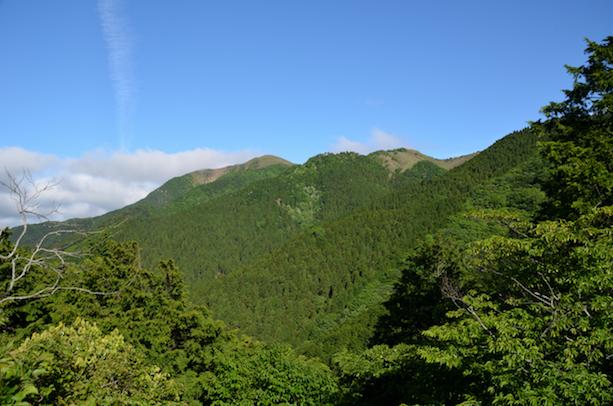 竜ヶ岳 遠足尾根コース 竜ヶ岳山頂方面