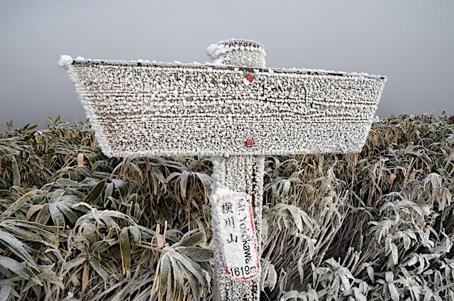 横川山 山頂 1,619m