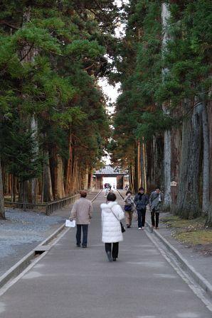 瑞巌寺 参道 杉並木