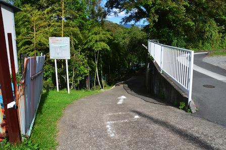 柿田川公園 対岸