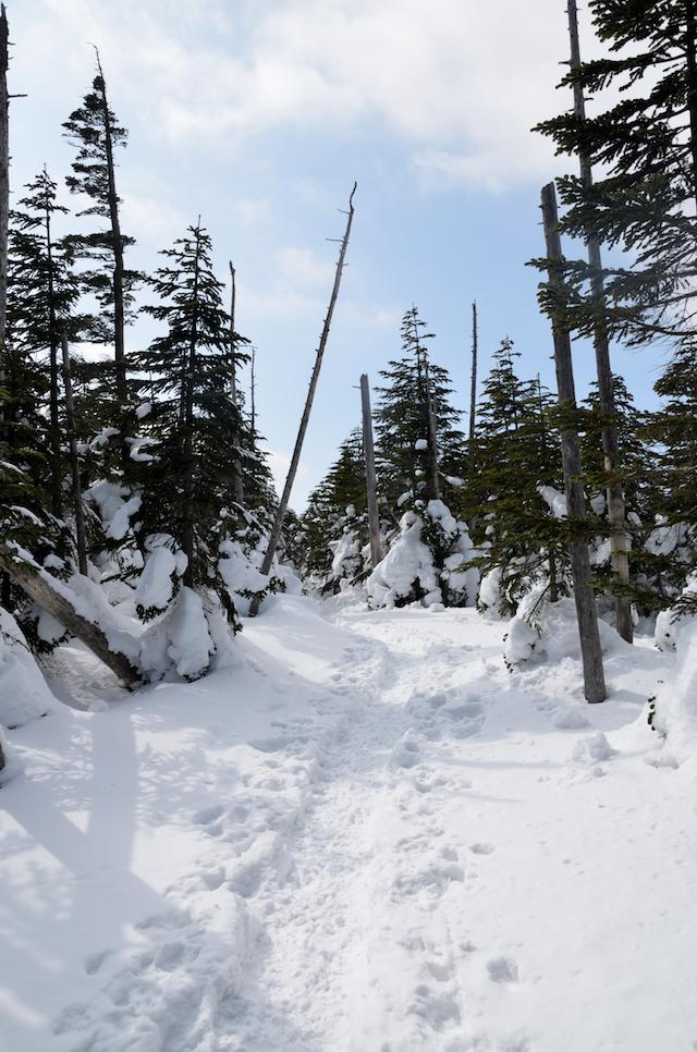 北横岳 登山 冬 雨池山