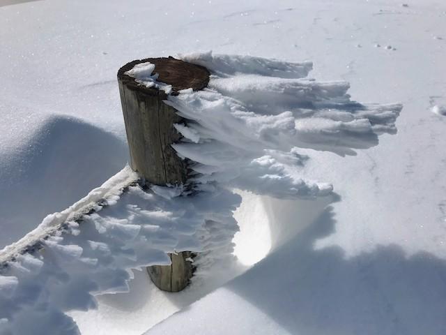 伊吹山 冬 雪山登山 山頂 エビの尻尾