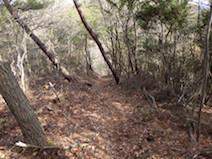 須衛 金山 登山道