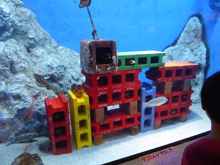 竹島水族館 ワンルームマンション