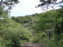 継鹿尾山 東海自然歩道