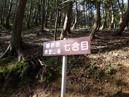 表登山道(大貝戸道) 7合目