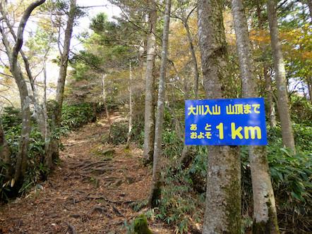 大川入山 登山道 あと1km看板