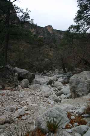 dry wash, devil's hall trail, guadalupe mountains