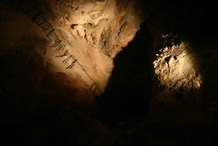 Old Ladder into Lower Cave, Carlsbad Caverns