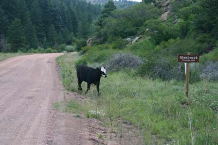 townsite of glenbrook, phantom canyon road
