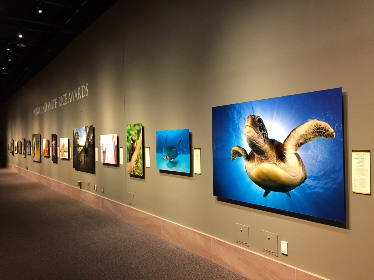 Nature's Best Photography exhibit at the National Museum of Natural History in Washington DC