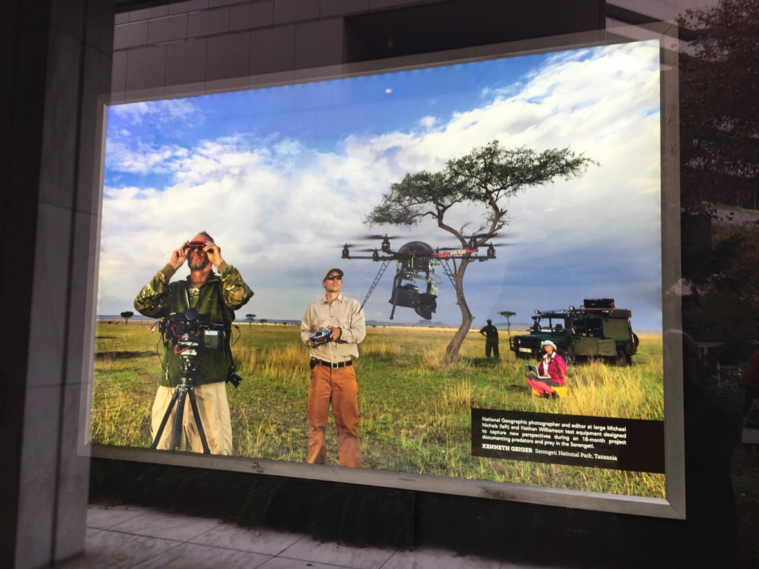 photography on display at the national geographic headquarters in washington dc
