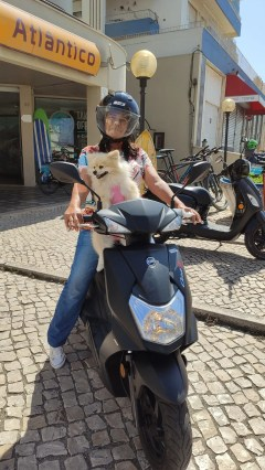 scooter-dog-time
