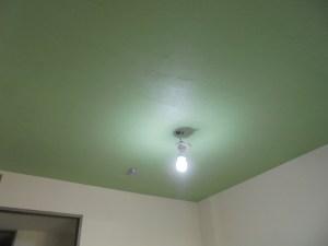 珪藻土の天井