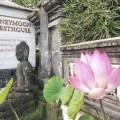 Honeymoon Guesthouse, Ubud, Bali, Indonesia