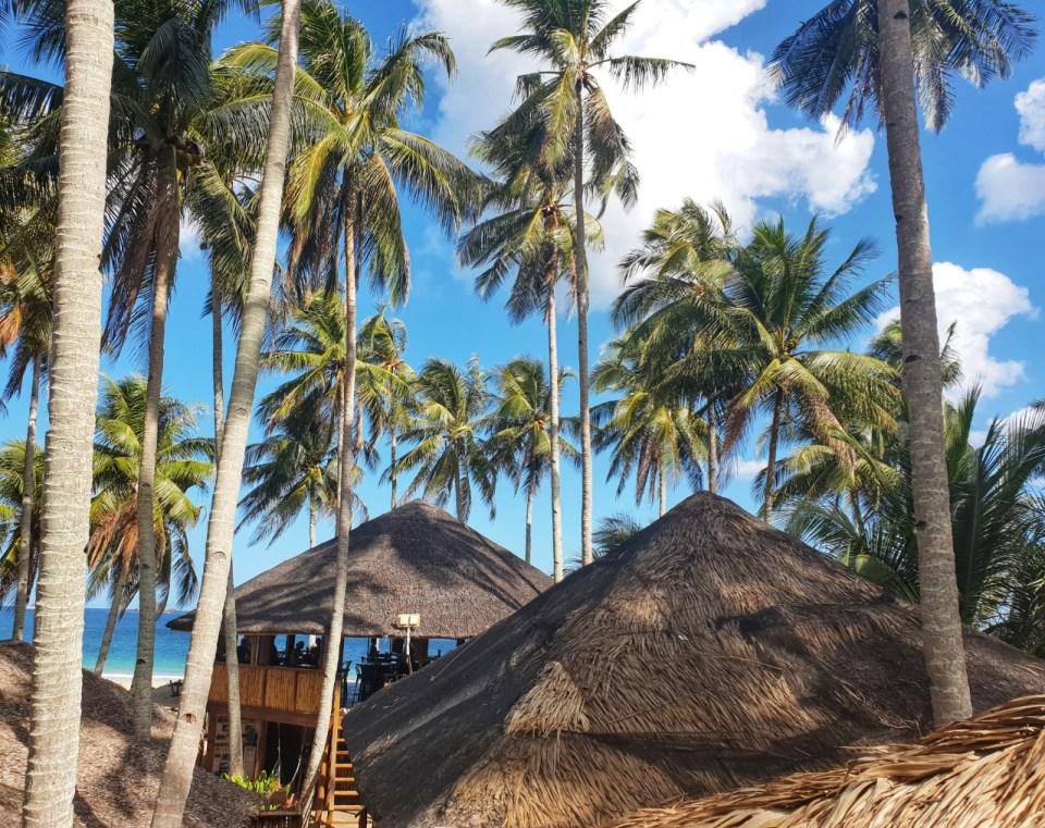 mad monkey hostel Nacpan Beach the loft