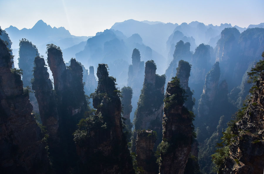 Forest Park-China-Landscape