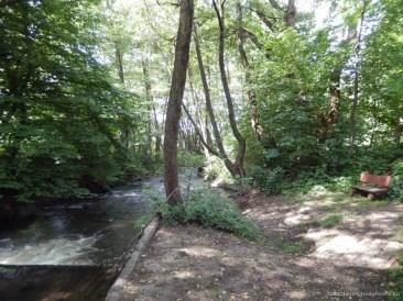 Pe malul râului este amenajată o promenadă și băncuțe din lemn