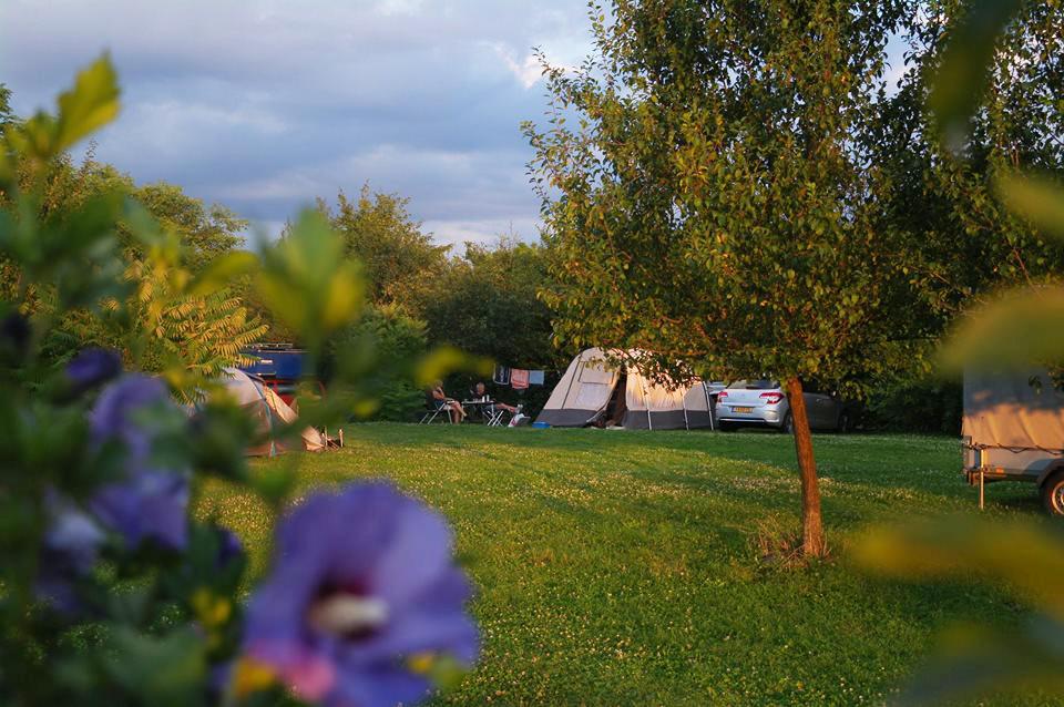 ---------- foto : camping De Oude Wilg