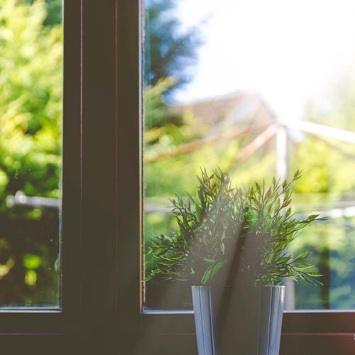 光指す窓辺