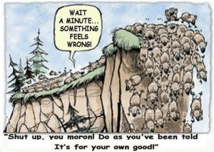 herding-behavior