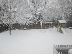 Winter Wonderland (2/5)