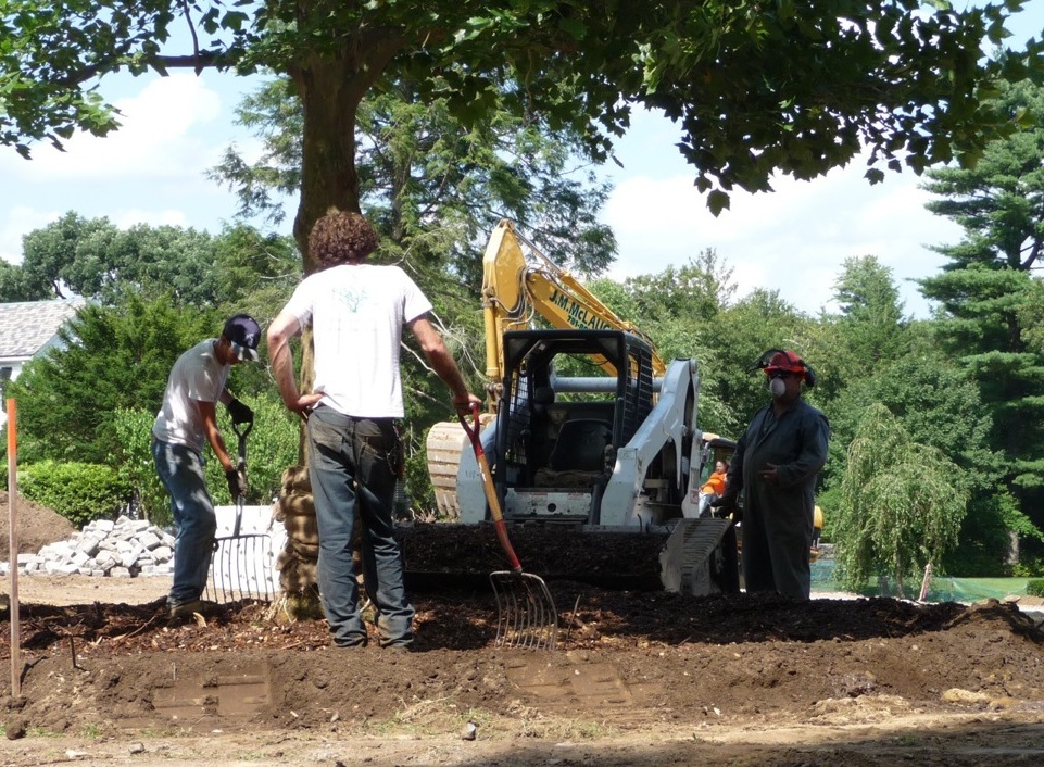 Two to four inches of mulch is added around the tree, and kept away from the trunk.