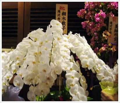 enbujou2007kazuchanhana.jpg