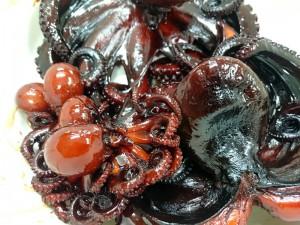 たこ甘露煮と飯蛸の甘露煮