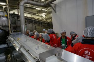 蒸し米の工程を見学