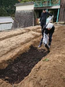そこの部分に腐葉土をたっぷり敷き込みます