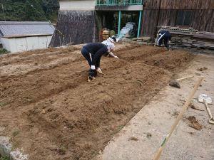畝の形を整えていきます