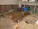 家の裏庭にテスト&育苗用に自然農法実験圃場をつくるぞ!(前編)