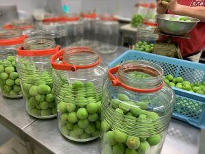 ひと瓶づつ手作業で大切に梅を入れ氷砂糖、ホワイトリカーを注ぎます